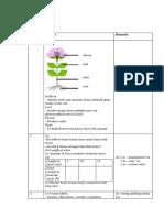 Paper 1 Answer Scheme