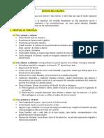 Huesos del Craneo (1).doc