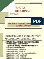 Clase 8.- Ultrasonografia Del El Tracto Genitourinario Fetal