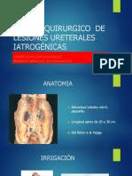 Manejo Quirúrgico de Lesiones Ureterales Iatrogénicas