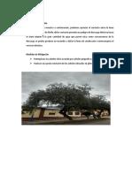 Peligros Eléctricos e Inundaciones
