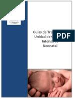 Guias NN La Serena_2012.pdf