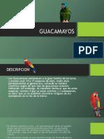 Guac a Mayos