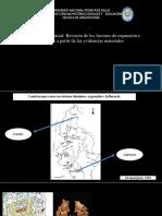Articulo Peruana IV