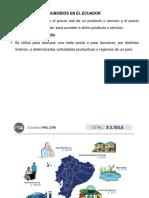 subsidios.pptx