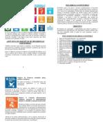 17  objetivos de IDHS