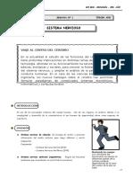 III Bim - 3er. Año - Guía 1 - Sistema Nervioso