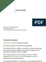 açao-neuromuscular.pptx