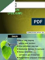 Materi Daun (2)