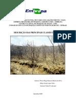 solos 2.pdf