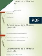 Determinantes de La Filtración Glomerular