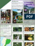 AMAZON REGION_ECUADOR