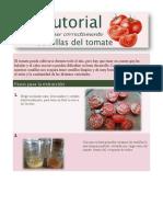 Extraer Semillas de Tomate