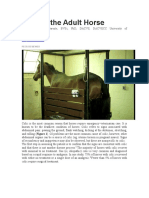 Colic in the Adult Horse