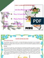 Plantas Nativas Del Peru - Las Americas - Chulucanas