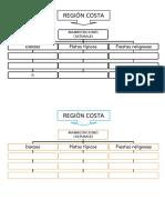REGION COSTA Mapa Conceptual