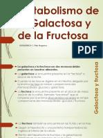 Metabolismo de La Galactosa y La Fructosa