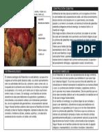 ORIGENES (Bisontes de Altamira) Gavito 1