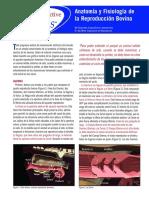 anatomia y fisiologia de la reproduccion bovina.pdf