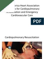 CPR 2010.pdf