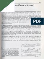 Microbiologia General-5.pdf