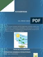 5 Fotosintesis