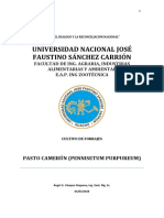Pasto Camerúm (Monografia)