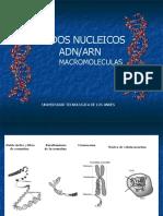 acidosnucleicos (1)