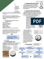 AMEBÍASE.pdf