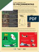 Cartaz Prevencao e Medidas Apos Acidentes Com Serpentes Peconhentas