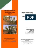 DuraznoPoda.pdf