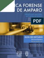 Guia Practica Forense Amparo