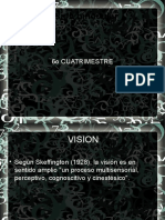 Vision Binocular 6o