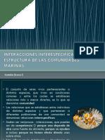 Interacciones Interespecíficas y La Estructura de Las Comunidades