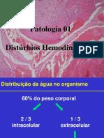 06_Aula_Hemodinamicos_1.ppt