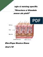Dermatologie Si Nursing Specific