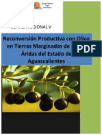 Proyecto Olivo AGS 2014-VERSION COMIDEPT-final_Optimizar