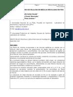 31_Nosetti_Utilización de fibras de celulosa en mezclas ....