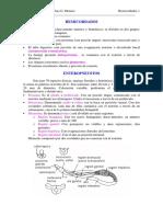 465-2013-08-22-L1 HEMICORDADOS.pdf