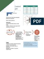 Biología y Control Aedes Aegypti