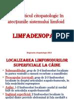 Limfo Adenopatii Vp1