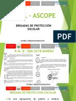 Brigadas de Protección Escolar