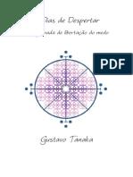 11 Dias de Despertar PDF
