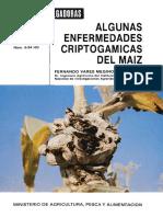 enfermedades criptogamicas del maiz