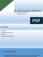 Unidad i ,Generalidades Del Sistema Digestivo, Clase 1.