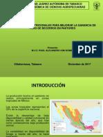 Presentacion-Raul Kim - 2