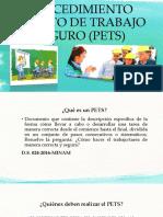 Procedimiento Escrito de Trabajo Seguro (Pets)