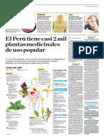El Perú Tiene Casi 2 Mil Plantas Medicinales de Uso Popular