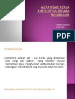 pptmekanismekerjaantibiotik-161005012359