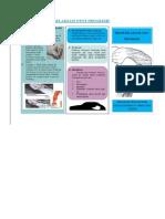 Leaflet Terapi Relaksasi Otot Progresif